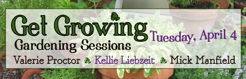 Gardening Sessions - Join us all day!